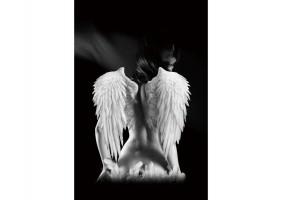 Картина ANGEL 80X120