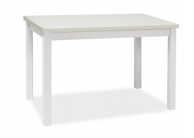 Стол ADAM белый мат 120X68